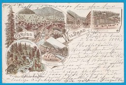 AK Litho Wildbad Olgastrasse  Calw 1896 Nach Altona  (1632 - Deutschland
