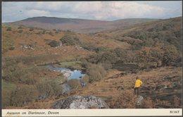 Autumn On Dartmoor, Devon, C.1970 - Harvey Barton Postcard - England