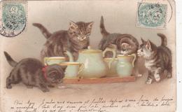 CPA Chats Cat Catze Chaton Buvant Du Lait Illustrateur - Cats