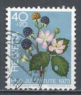 Switzerland 1973. Scott #B420 (U) Fruits, Blackberries * - Pro Juventute
