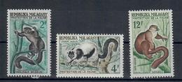 MADAGASCAR 1961  - FAUNA  - ANIMALI- SERIE COMPLETA - MNH ** - Madagascar (1960-...)
