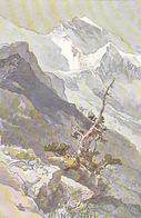 Jungfrau Sign. Compton         (P-141-70208) - Compton, E.T.