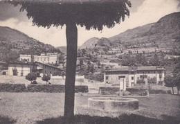 CARTOLINA - POSTCARD - CUNEO - VINADIO - VALLE STURA - M. 910 - PANORAMA - Cuneo