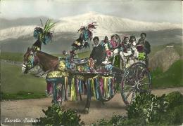 CARRETTO SICILIANO  Cavallo Bardato  Decorazioni  Sullo Sfondo L'Etna  Horse - Horses