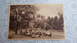 LAOS _ LUANG PRABANG  _ PETIT MARCHE DU SOIR    …………13 - 17 KZ - Laos