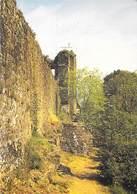 35 - HEDE - Chemin De Ronde Du Chateau. - France