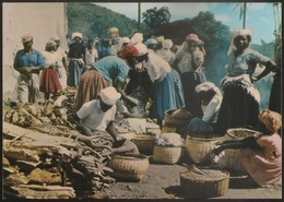 Postal Cabo Verde - Cape Verde - Ilha De Santiago - Mercado Dos Orgãos - Carte Postale - Postcard - Cape Verde