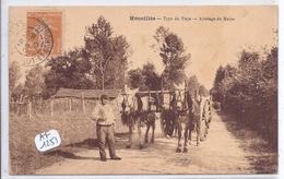 HOUEILLES- ATTELAGE DE MULES- RARE AYANT CIRCULEE - France