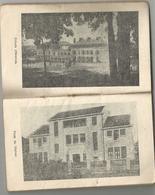 ORPHELINAT DES CHEMINS DE FER : AGENDA 1951 - Calendars