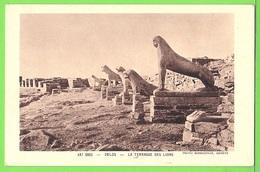 GRECE / DELOS / LA TERRASSE DES LIONS  .... / Carte Vierge - Grecia