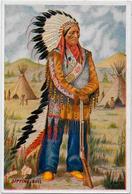 CPSM Indiens Indien Non Circulé Voir Scan Du Dos Sitting Bull - Native Americans