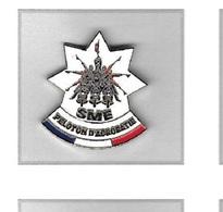 Pin's  Tricolore  Moto, Police, Gendarmerie, Militaire  S M E  PELOTON  D' ACROBATIE - Army