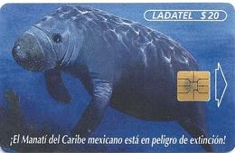 Mexico - Ladatel - Manati Manatee - P-0025 - 20$, 1997, Used - Mexico