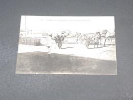 DJIBOUTI - Carte Postale - Transport Du Sel Par Chameaux - L 19220 - Djibouti