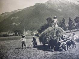 Annecy , Les Foins Vers Le Col De Bluffy , Hélliogravure D'aprés G L Arlaud , 1934 - Documenti Storici