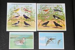 Turkmenistan 15.12.2002 Mi # 168-79 Klbg Bl 22-23 Native Birds, MNH OG - Turkmenistán