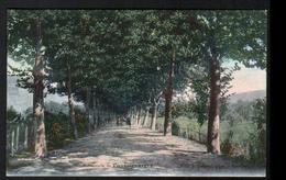 30, Besseges, Promenade De Foussignarges - Bessèges