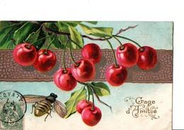 """Abeille Repérant Les Cerises  """"Gage D'amitié"""" N°506. - Insects"""