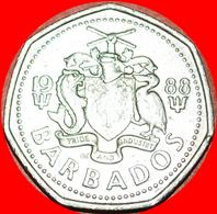 # FISH (1988-2005): BARBADOS ★ 1 DOLLAR 1988! LOW START ★ NO RESERVE! - Barbados