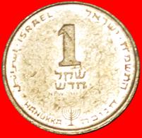 # Hanukka: PALESTINE (israel) ★ 1 NEW SHEKELS 5748 (1988)! LOW START ★ NO RESERVE! - Israel