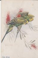CPA  OISEAU 2 PERRUCHES LOVE BIRDS - Pájaros