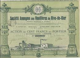 ACTION DE 100 FRS - SOCIETE DES HOUILLERES DE RIVE- DE - GIER - 1904 - Mines