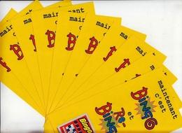LOT DE 10 FLAYERS BINGO ET RE-BINGO GRATTAGE FDJ FRANCAISE DES JEUX NEUFS 10,4cmX20cm - NOTRE SITE Serbon63 - Publicités