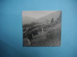 PHOTOGRAPHIE  SAMOENS  -  74  -  Sommet  De La Bourgeoise  -  1961  -  8,5  X  9,5 Cms -  Haute Savoie - Samoëns