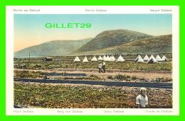MONT GUILBOA, PALESTINE -  MONT GELBOE, ANIMÉE - MONTE DE GELBOÉ - - Palestine