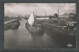Oude Pk.  Dunkerque Ile Jeanty - France