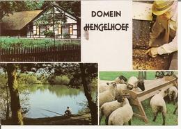 Groeten Uit Domein Hengelhoef - Houthalen-Helchteren
