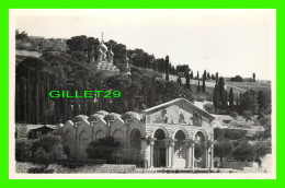 GETHSÉMANE, ISRAEL - CHURCH - L'ÉGLISE DE DE GETHSÉMANI - PHOTO LEON - - Israel