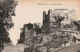 Carte Postale Ancienne De L'Isère - Crémieu - Château Delphinal - Crémieu