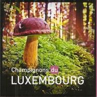 LUXEMBURG, 2013, Booklet 24, Mushrooms - Booklets