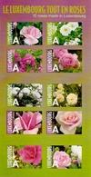 LUXEMBURG, 2010, Booklet B, ATM Roses, 10xA - Booklets