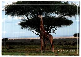 KENYA SAFARI. - Kenya