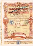 Ancienne Action - Compagnie Des Tabacs Et Plantations Du Cameroun  - Titre De 1929 - Afrique