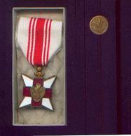 CROIX-ROUGE Médaille + épinglette - Bélgica