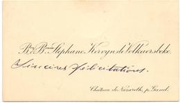 Visitekaartje - Carte Visite - Adel Noblesse - Baron & Baronne Stephane Kervyn De Volkaersbeke - Nazareth - Visiting Cards