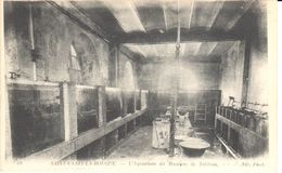 (50) Manche - CPA - Saint Vaast-la-Hougue - L'Aquarium Du Muséum De Tatihou - Saint Vaast La Hougue