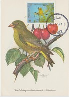 Carte Maximum 1987 Oiseaux 1230 - Jordanië