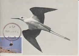 Carte Maximum 1987 Oiseaux 1231 - Jordanië
