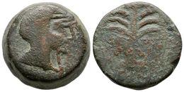 39 BARIA. As. 200-100 A.C. Villaricos (Almería). A/ Cabeza De Heracles Con Piel De León A Derecha. R/ Palmera Con Frutos - Spain