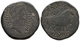 52 CALAGURRIS. As. Epoca De Augusto. 27 A.C.-14 D.C. Calahorra (La Rioja). A/ Cabeza Desnuda A Derecha, Alrededor MVN.CA - Spain