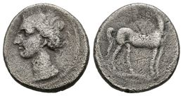 61 CARTAGONOVA. 1/2 Shekel. 220-205 A.C. Cartagena (Murcia). A/ Cabeza De Tanit A Izquierda. R/ Caballo Parado A Derecha - Spain