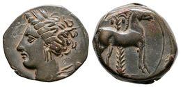 66 CARTAGONOVA. 1/2 Calco. 220-215 A.C. Cartagena (Murcia). A/ Cabeza De Tanit A Izquierda. R/ Caballo A Derecha, Detrás - Spain