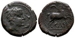 93 CELSA-KELSE. Semis. 120-50 A.C. Velilla De Ebro (Zaragoza) A/ Cabeza Masculina A Derecha, Rodeada De Tres Delfines. R - Spain