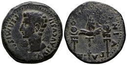 97 COLONIA PATRICIA. Dupondio. Epoca De Augusto. 27 A.C.-14 D.C. Córdoba. A/ Cabeza De Augusto A Izquierda Alrededor PER - Spain