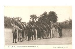 CPA AFRIQUE A.E.F. Le Résultat D'une Hécatombe - Cartes Postales