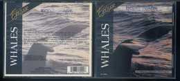Whales - Eco Voyage - Nature's Relaxing Sound With Music - 1CD - Musik & Instrumente